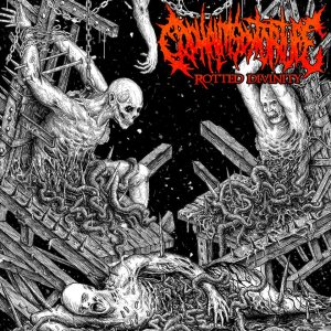 Cephalitis By Torture - Rotted Divinity cover art