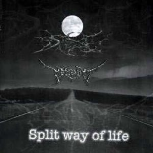 Messershmit - Split Way of Life cover art