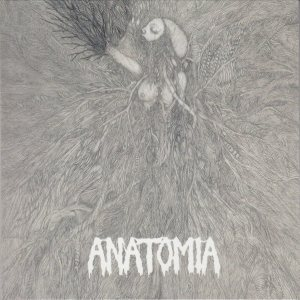 Anatomia / Sex Messiah - Anatomia / Sex Messiah cover art