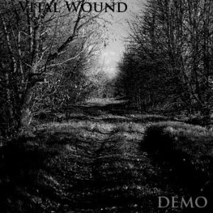 Vital Wound - Demo cover art
