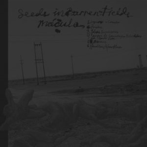 Mácula / Seeds in Barren Fields - Mácula / Seeds in Barren Fields cover art