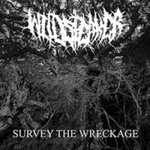 Wildspeaker - Survey the Wreckage cover art