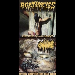 Agathocles / Cannibe - Reduced to an Object / Natural Disasters from Dead Bodies cover art
