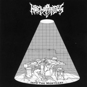 Haemophagus - Into the Mortuary cover art