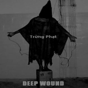 Deep Wound - Trừng phạt cover art