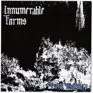Innumerable Forms - Dark Worship cover art