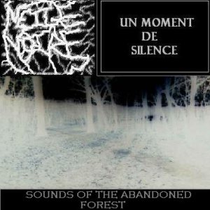 Un Moment De Silence - Sounds of the Abandoned Forest cover art