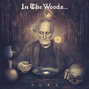 In the Woods... - Pure cover art