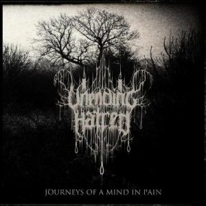 Unending Hatred - Journeys of a Mind in Pain cover art