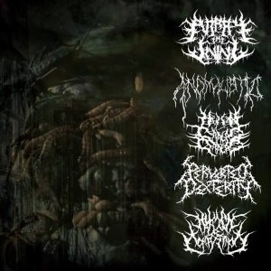 Perverted Dexterity / Putrefy the Living / Human Carcass Crop Circle / Anomalistic / Human Decomposition - Rotten Bowels: 5-Way Split cover art