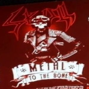 Skull - Metal to the Bone cover art