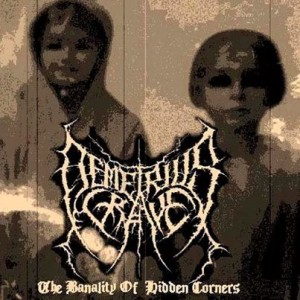 Demetrius Grave - The Banality of Hidden Corners cover art