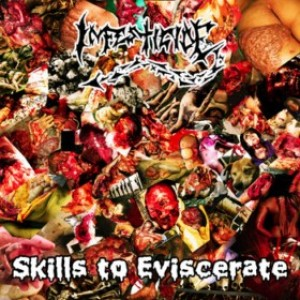 Infesticide - Skills to Eviscerate cover art