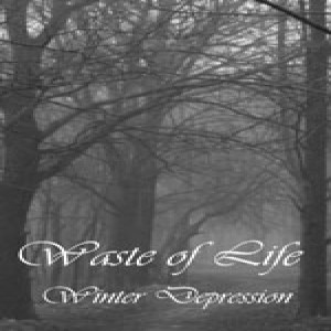 Waste Of Life - Winter Depression cover art