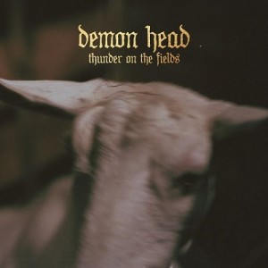 Demon Head - Thunder on the Fields cover art