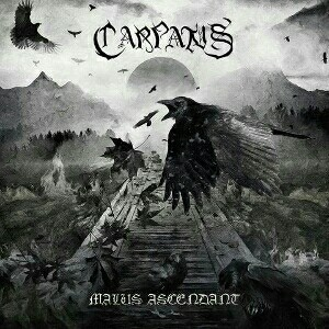 Carpatus - Malus Ascendant cover art