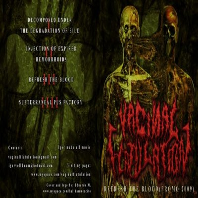 Vaginal Flatulation - Refresh the Blood (Promo 2009) cover art