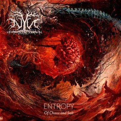 NYN - Entropy: Of Chaos and Salt cover art