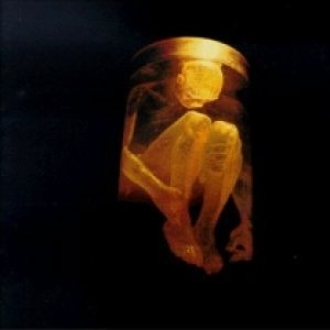 Alice In Chains - Nothing Safe: Best of the Box cover art