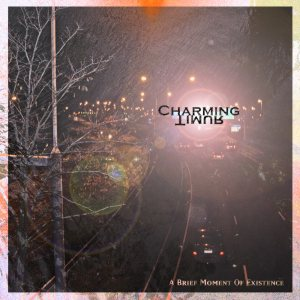 Charming Timur - A Brief Moment of Existence cover art