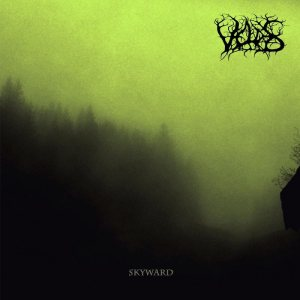 Veldes - Skyward cover art