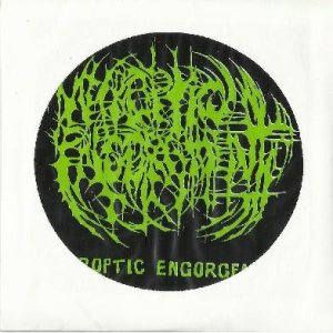 Necroptic Engorgement - Demo 2012 cover art