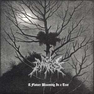 Age of Darkness - A Flower Blooming in a Tear cover art