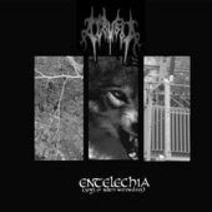 Acrybia - Entelechia (Songs of Modern Werewolves) cover art