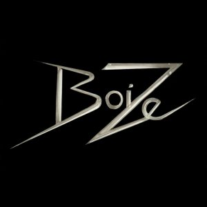 Boize - The Bug cover art