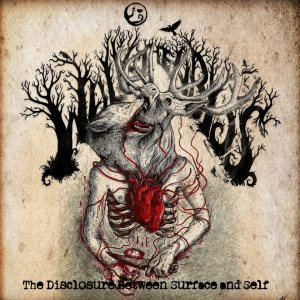 Walk the Abyss - The Disclosure Between Surface and Self cover art