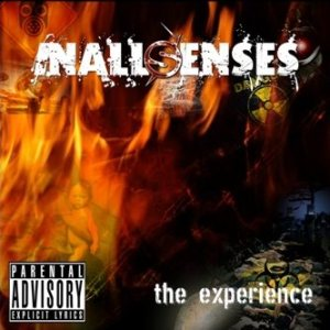 InAllSenses - The Experience cover art