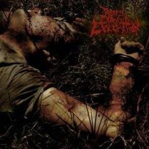 Rotten Cadaveric Execration - Execrate cover art