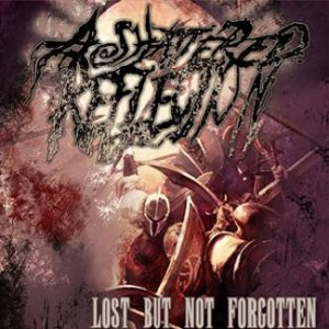 A Shattered Reflection - Lost But Not Forgotten cover art