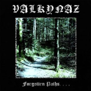 Valkynaz - Forgotten Paths. . . . cover art