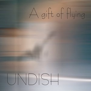 Undish - A Gift of Flying cover art