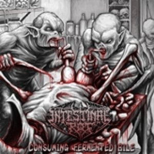 Intestinal Rot - Consuming Fermented Bile cover art