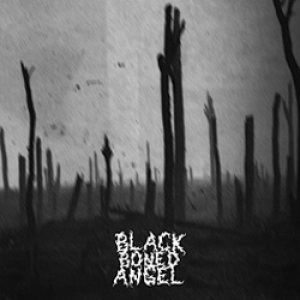 Black Boned Angel - Verdun cover art