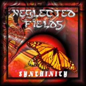 Neglected Fields - Synthinity cover art