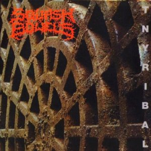 Squash Bowels - Tnyribal cover art