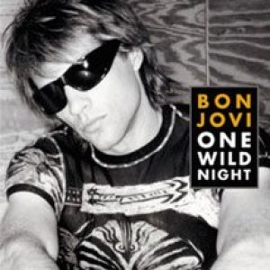 Bon Jovi - One Wild Night cover art
