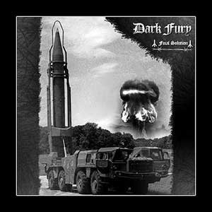 Dark Fury - Final Solution cover art