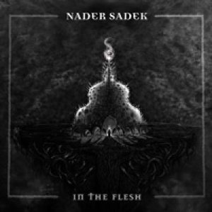 Nader Sadek - In the Flesh cover art