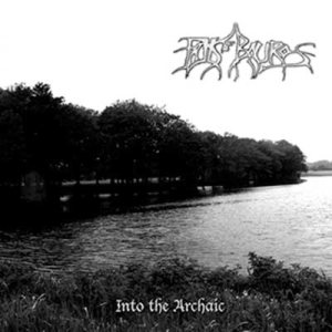 Falls of Rauros - Into the Archaic cover art
