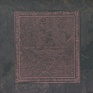 Negura Bunget - From Transilvanian Forest cover art