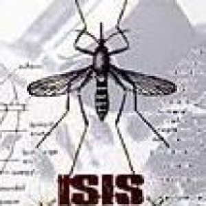 Isis - Mosquito Control cover art