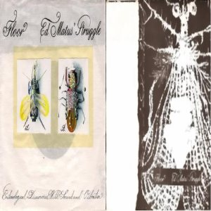 Floor - Entomological Discoveries with Sound and Vibration cover art