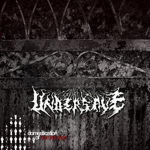 Undersave - Domestication of Human Race cover art