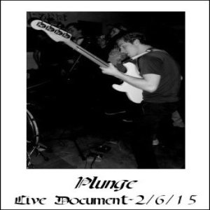 Plunge - Live Document-2/6/15 cover art