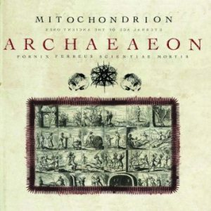 Mitochondrion - Archaeaeon cover art