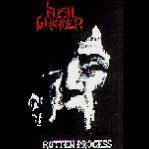 Flesh Grinder - Rotten Process cover art